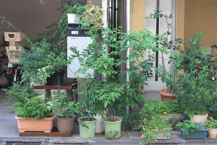 tokyo-brusselskitchen-restaurant-blog-guide-food-japan-kyoto04